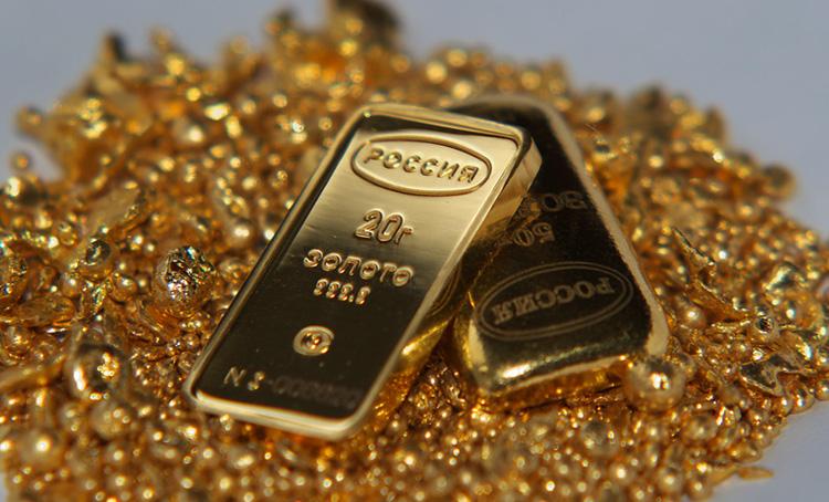 Много золота 585 пробы