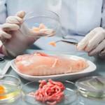 Экспертиза продуктов питания — сколько она в среднем стоит