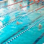 Сколько стоит абонемент в бассейн на один месяц