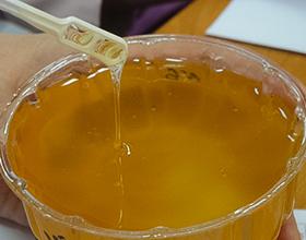 Экспертиза меда