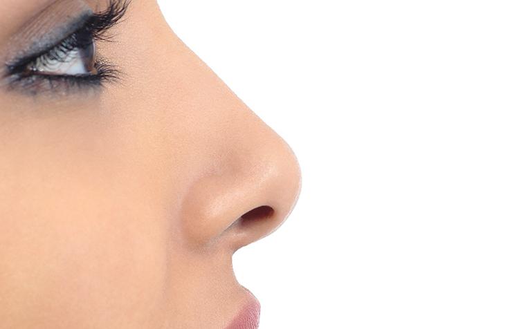 Без горбинки на носу