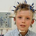 Сколько стоит сделать ЭЭГ и от чего зависит стоимость