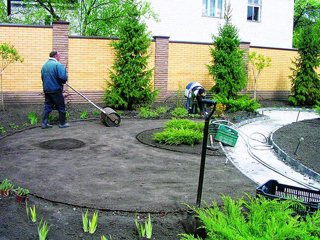 В процессе устройства газона
