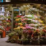 Сколько в среднем стоит открыть цветочный магазин с нуля?