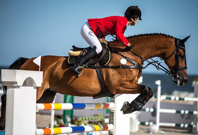 Преодоление препятствий на лошади