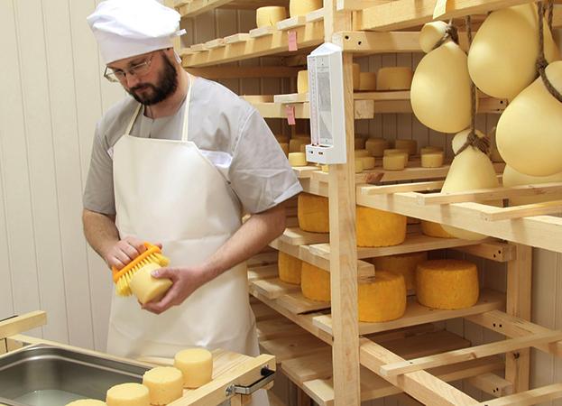 Специалист производит сыр