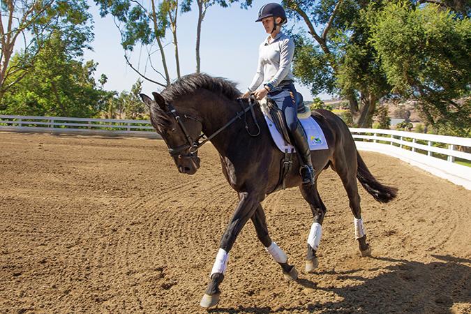 Девушка занимается конным спортом