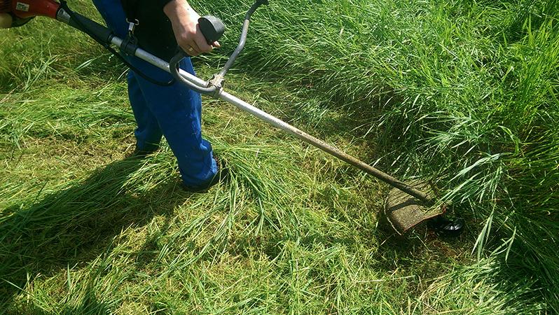 Профессиональный скос травы