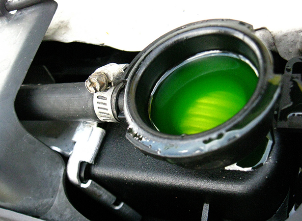Залитый зеленый антифриз