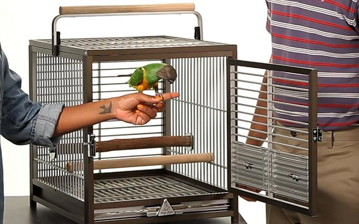 Современная клетка для попугая