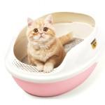 Сколько стоит лоток для кошек: виды и средние цены