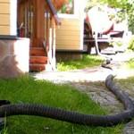 Сколько в среднем стоит откачать канализацию в частном доме?