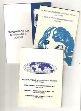 Ветеринарный паспорт для собачки