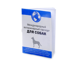 Сколько стоит ветеринарный паспорт для собак?