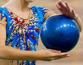 Сколько стоит мяч для художественной гимнастики?
