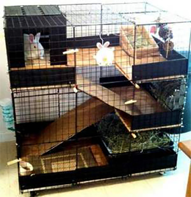 Большая клетка для кролика