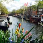 Во сколько обойдется поездка в Голландию
