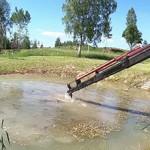 Сколько в среднем стоит чистка пруда от ила?