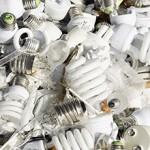 Сколько стоит утилизация люминесцентных ламп?